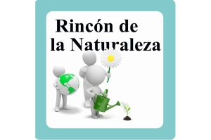 010 rincon de la naturaleza