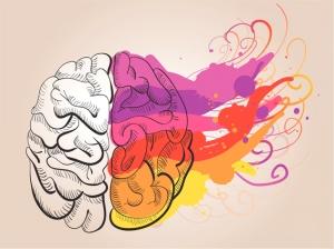 cerebro 001